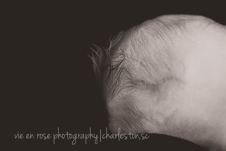 charleston newborn photography