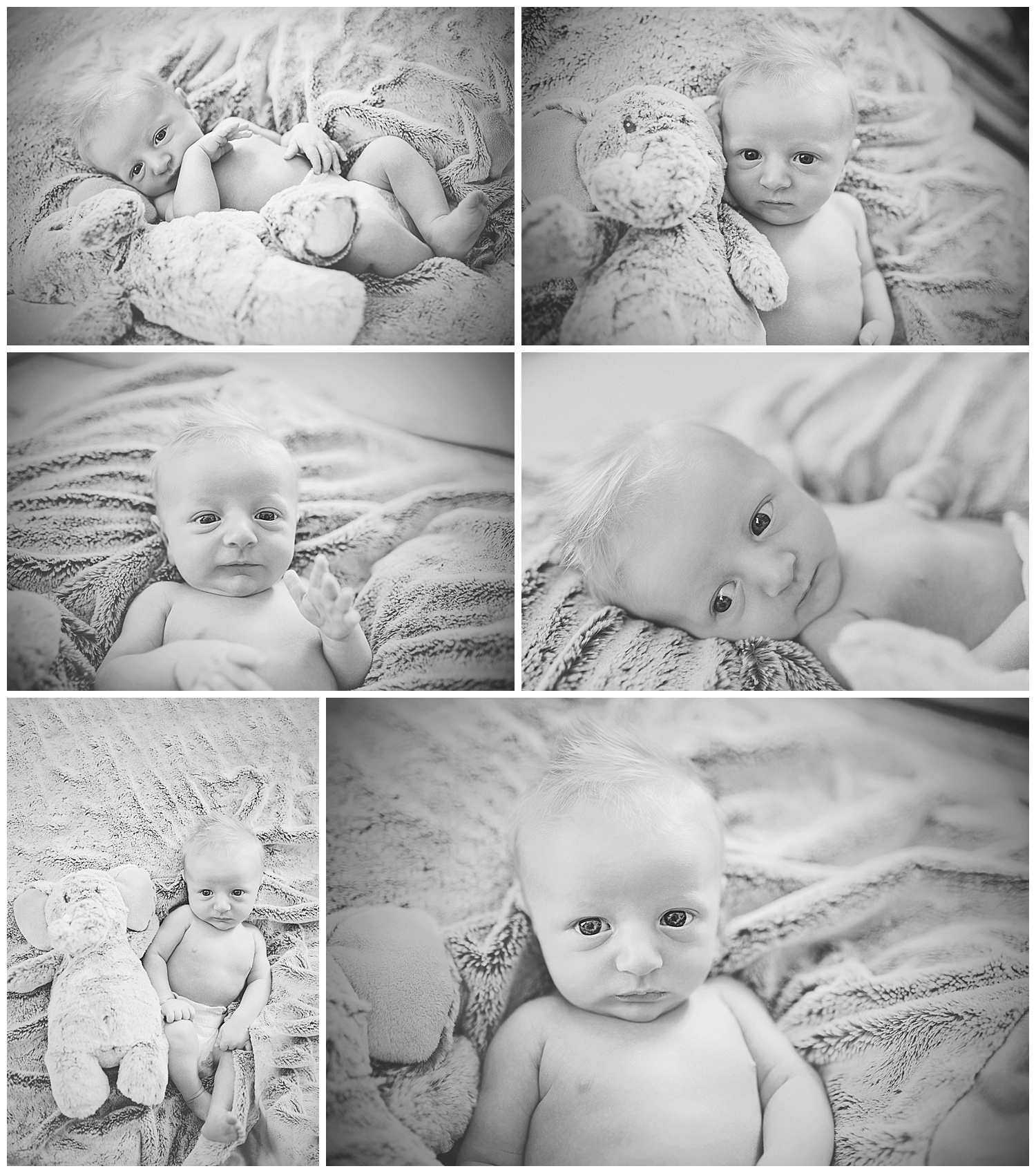 Newborn session Rochester cipriano 29.jpg