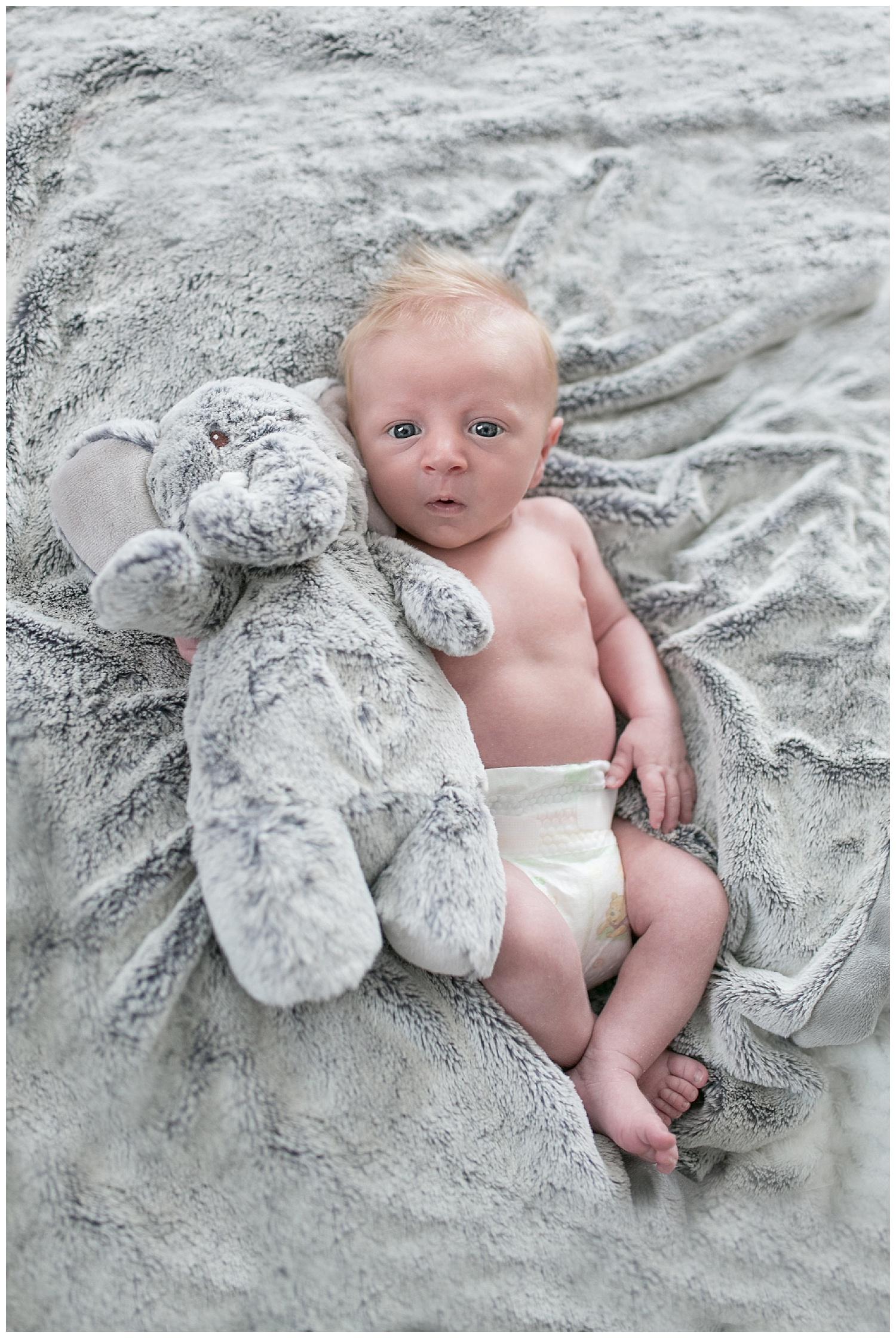 Newborn session Rochester cipriano 31.jpg