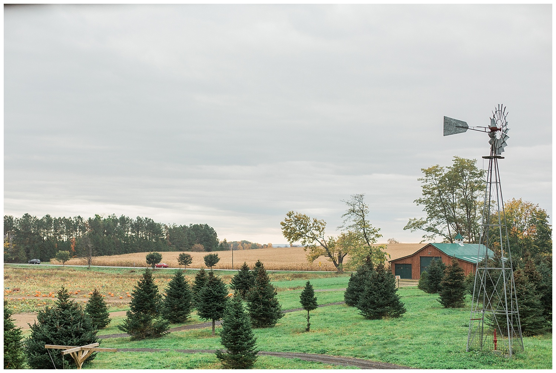 opal turns three stokoe farms-56_Buffalo wedding photography.jpg