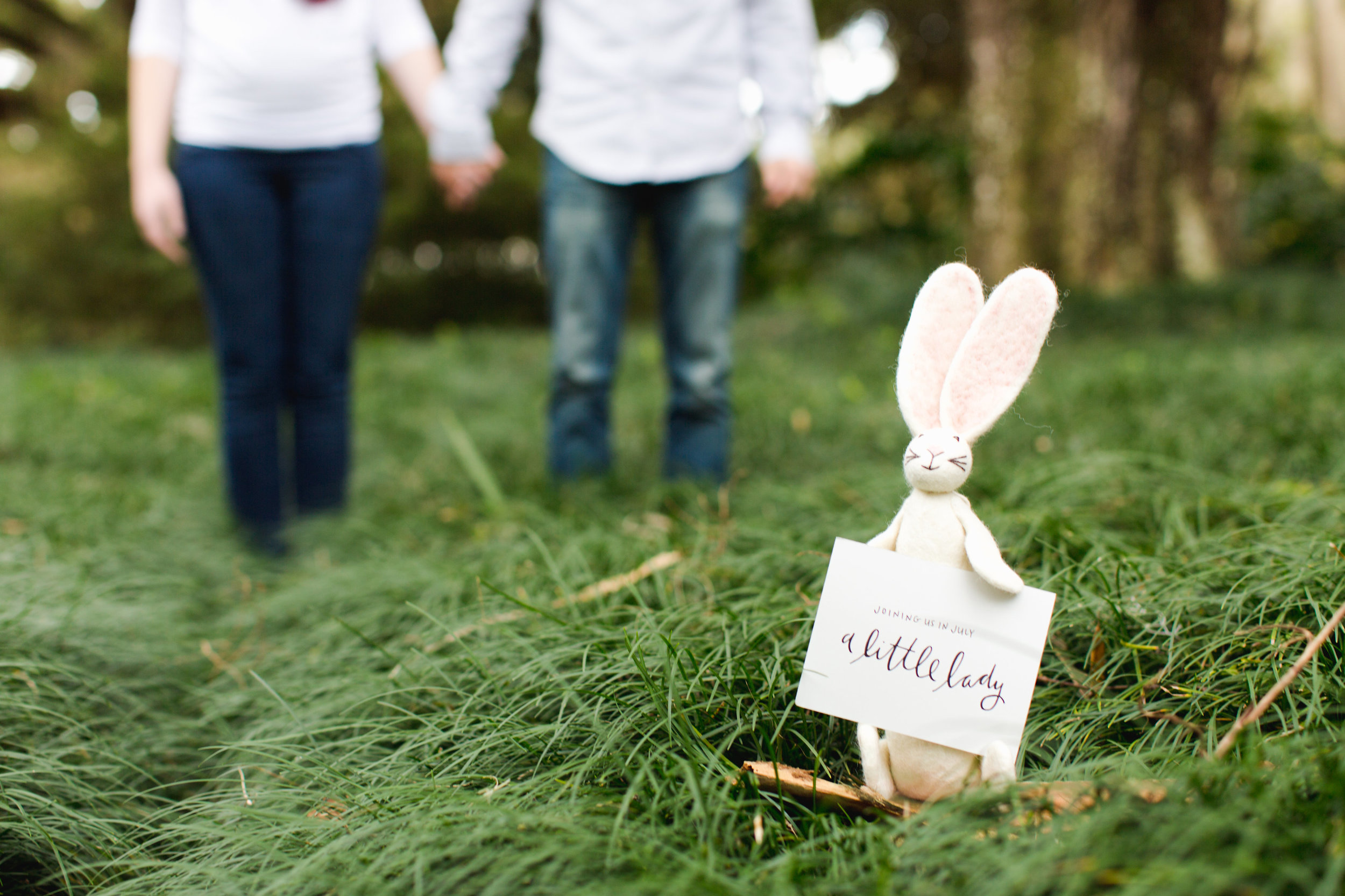 Gender Reveal Announcement Photo - Little Girl Bunny