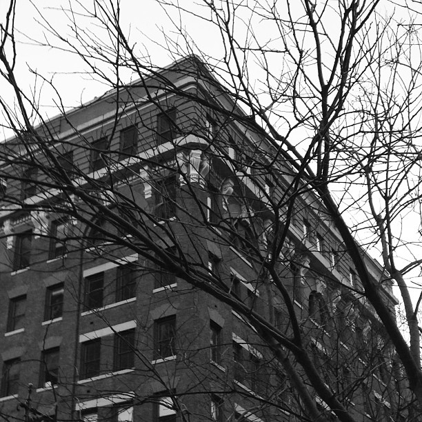 Cold winter day in #tribeca #nyc