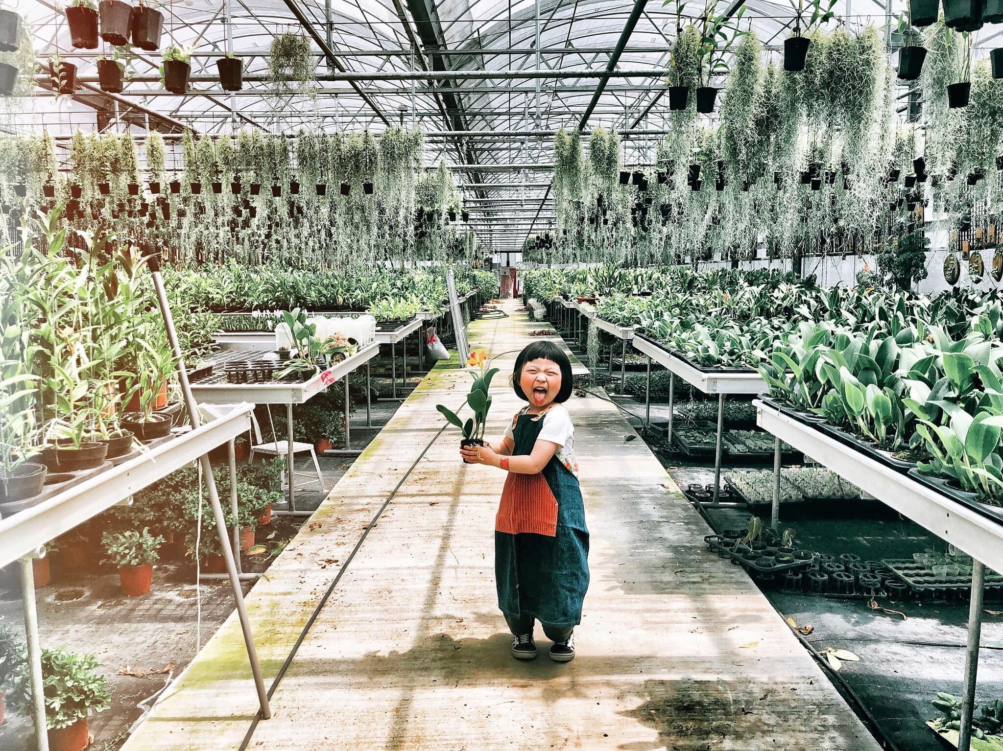 植物X職物 | 用雙手蓋一座森林遊樂園  由小星慢慢親自在市集攤位帶領大家, 希望讓親子可以在職人手作和植物的溫度中, 找回自然的感動。  時間 | All time 費用 | $300-350