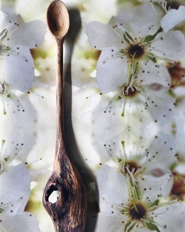 Oak Organic
