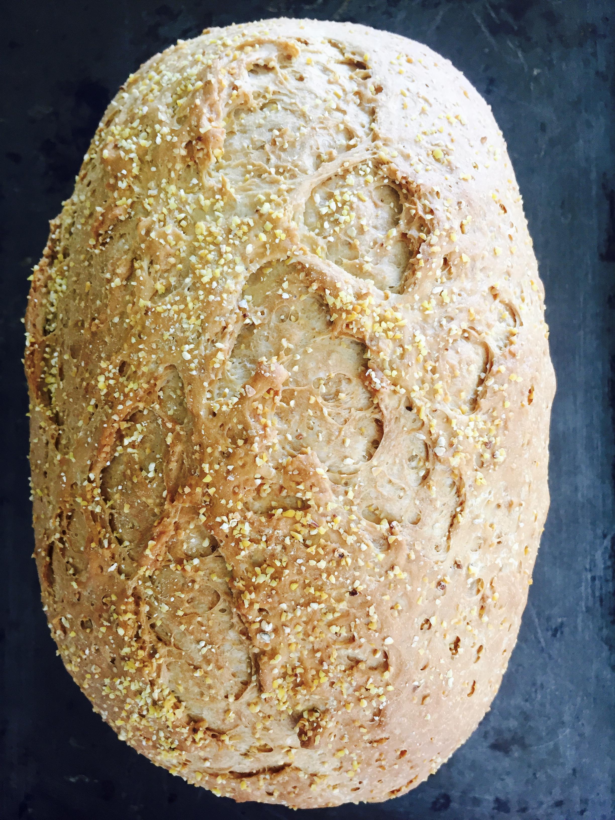 Anadama Bread.jpg