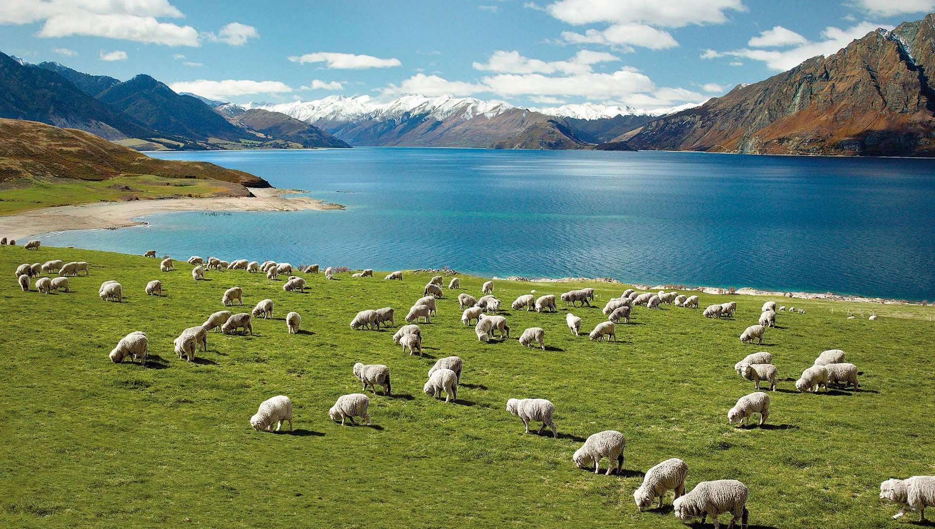 Best of New zealand - 14-Day Tour from Auckland to Queenstown