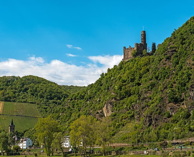 enchantingrhine_germany_rhinegorge_ss_216515635_dailyprogram.jpg