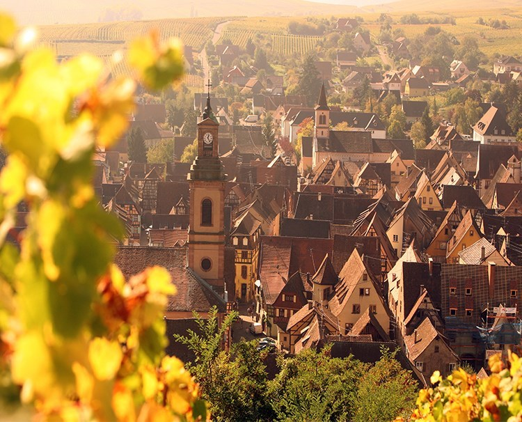 enchantingrhine_FRANCE_Riquewihr_ss_460398736_dailyprogram.jpg