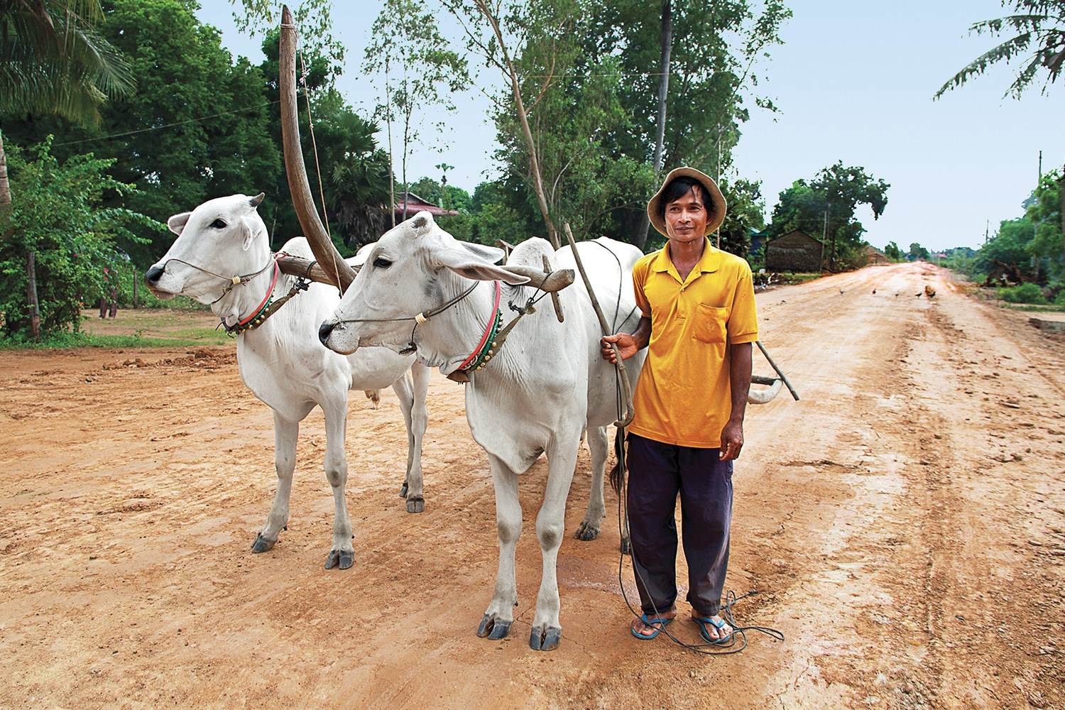 richesofthemekong_OUDONG_Ox_Cart_IMG_0643_UG2_48752_gallery.jpg