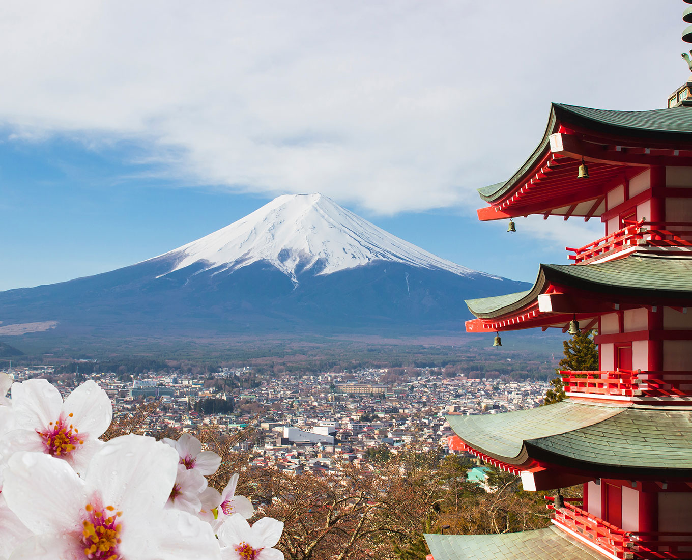 Japan's Cultural and Coastal Discovery -