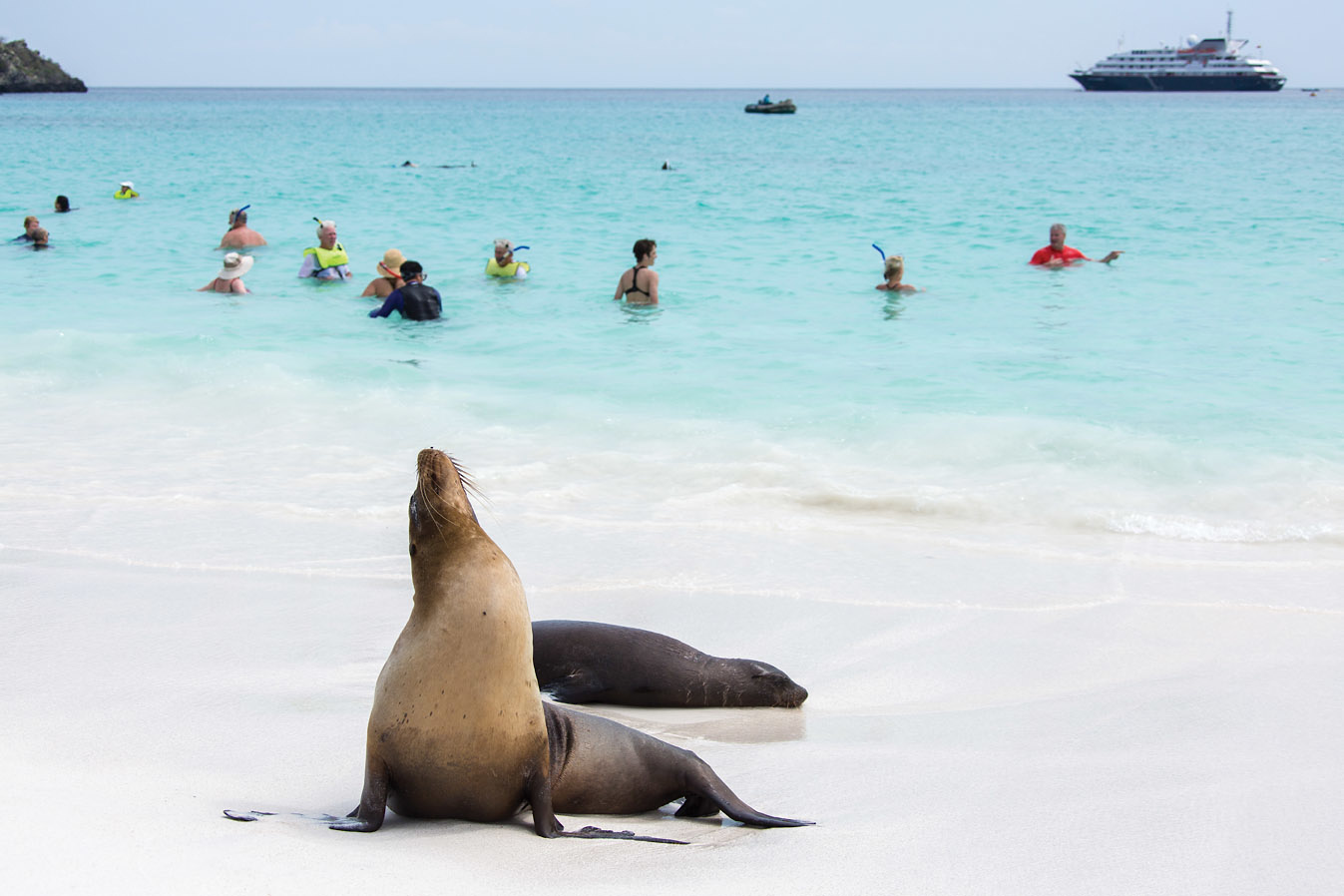 Galapagos Islands Expedition -
