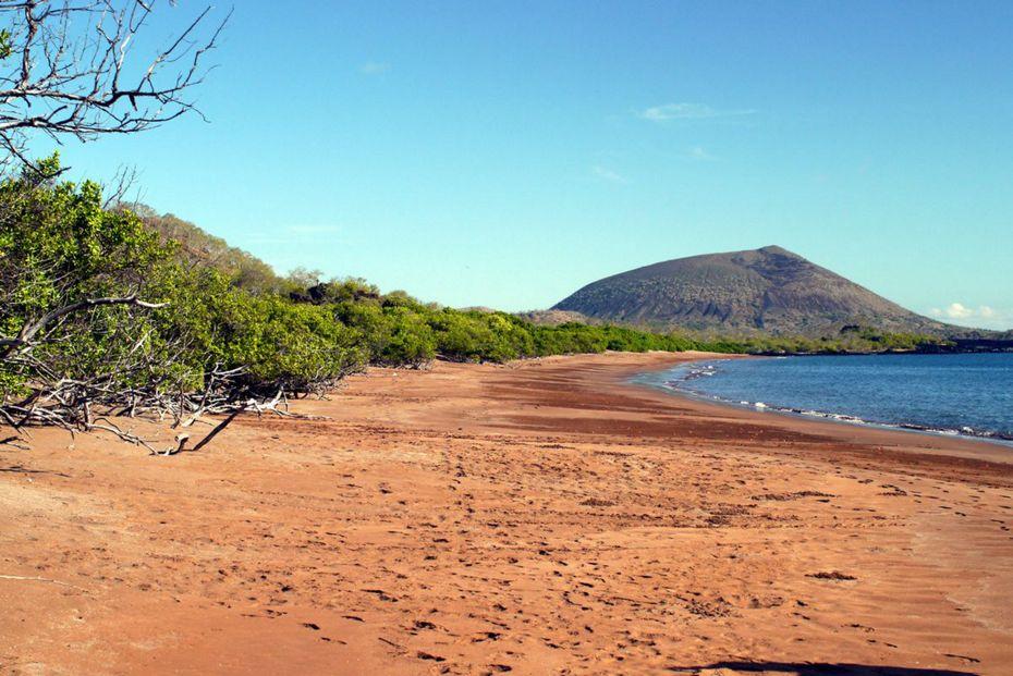 3-playa-espumilla-silversea-galapagos-cruise-espumilla-beach-santiago-island.jpg