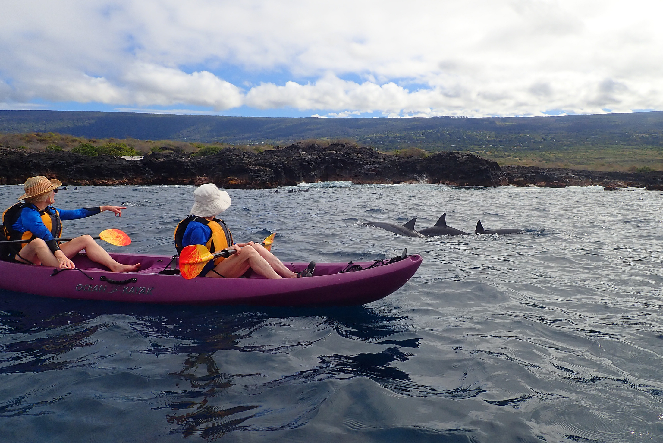2200x1470-HI-UnCruise-kayakers-spotting-dolphins-Hawaii.jpg