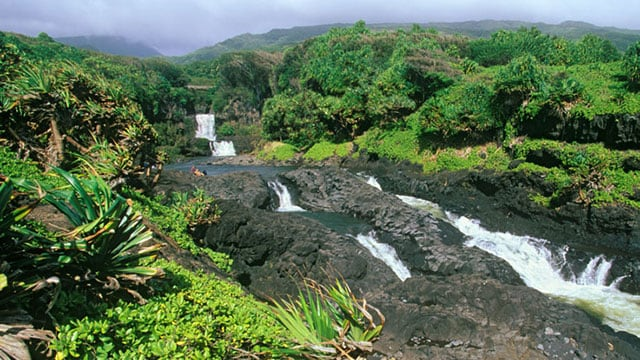 experiencing-maui-sights-and-sounds.jpg