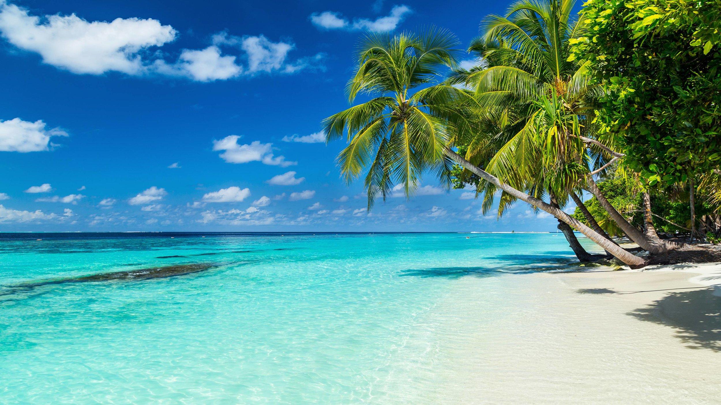 Caribbean & Bahamas -