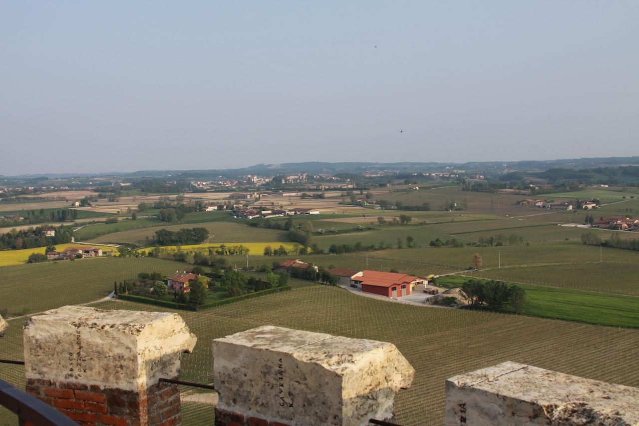 IMG_1732.panorama dai merli con citeraJPG 1280x.jpg
