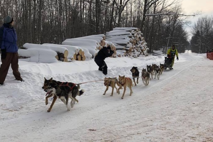 Spiller in the middle of the team, Joan behind her, during the Apostle Islands sled dog race, where Spiller earned the nickname 'the undefeated Spiller' for the first-place finish.