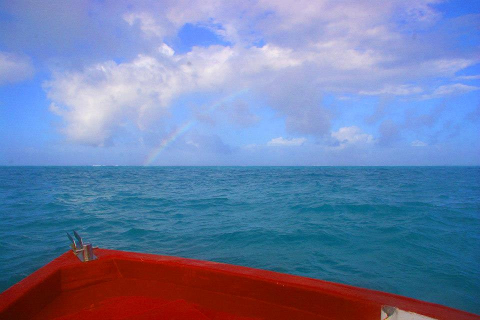 Photo taken by me somewhere off the coast of Zanzibar on my solo trip through East Africa.