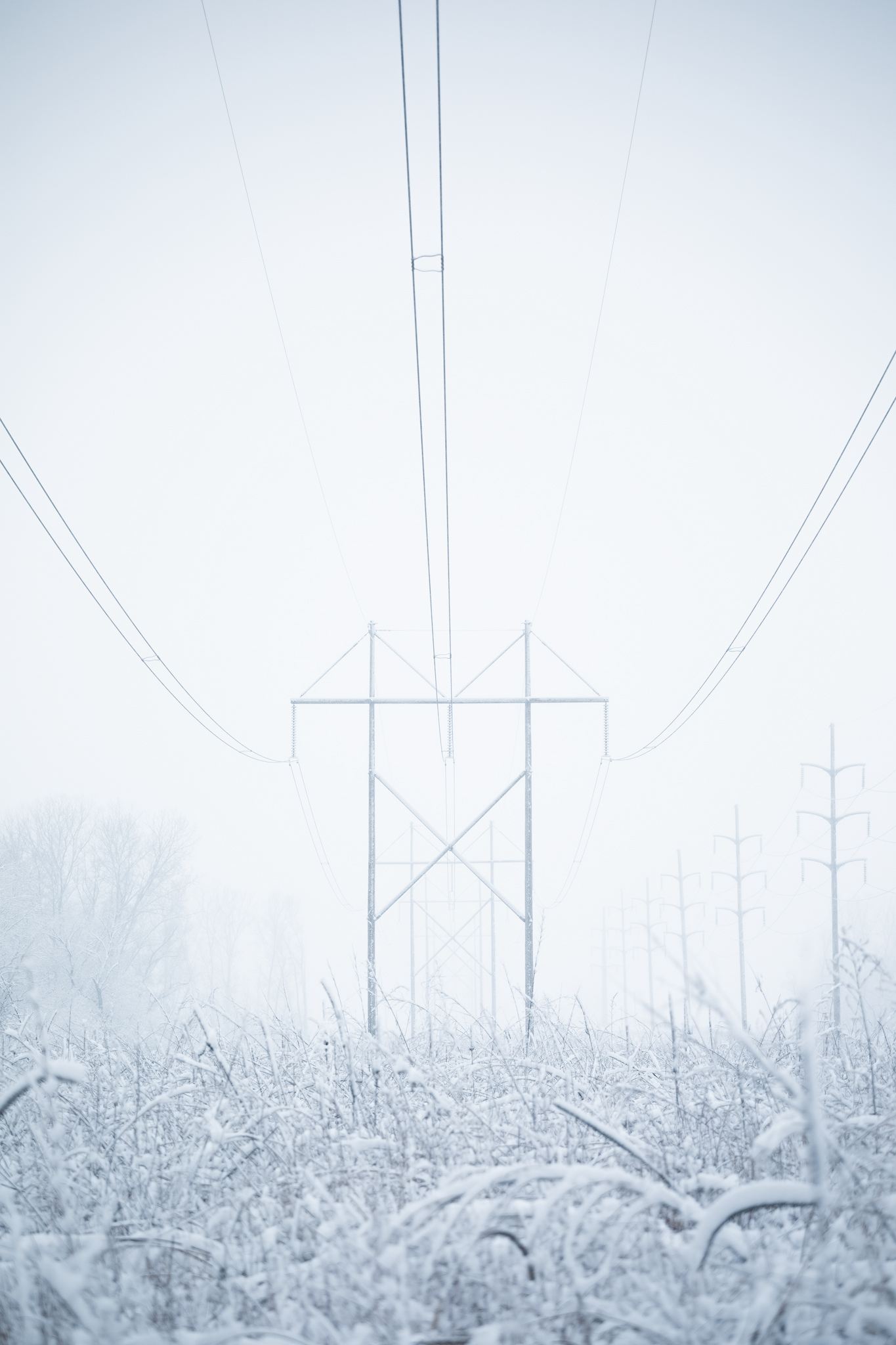 Power lines in Lake Manawa State Park - Handheld - 122mm - ISO 250 - f/4 - 1/400 sec