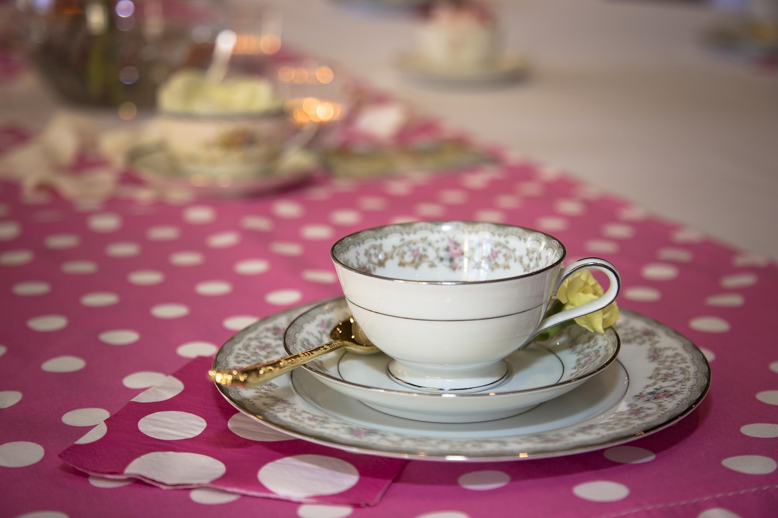 Enchanted Wedding Tours - Tea 1.30.16-27.jpg
