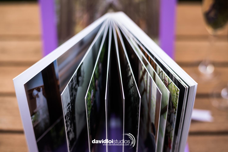 David Loi Studios - Wedding Album - Florence - Dallas, TX -3.jpg
