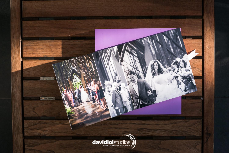 David Loi Studios - Wedding Album - Florence - Dallas, TX - 4.jpg