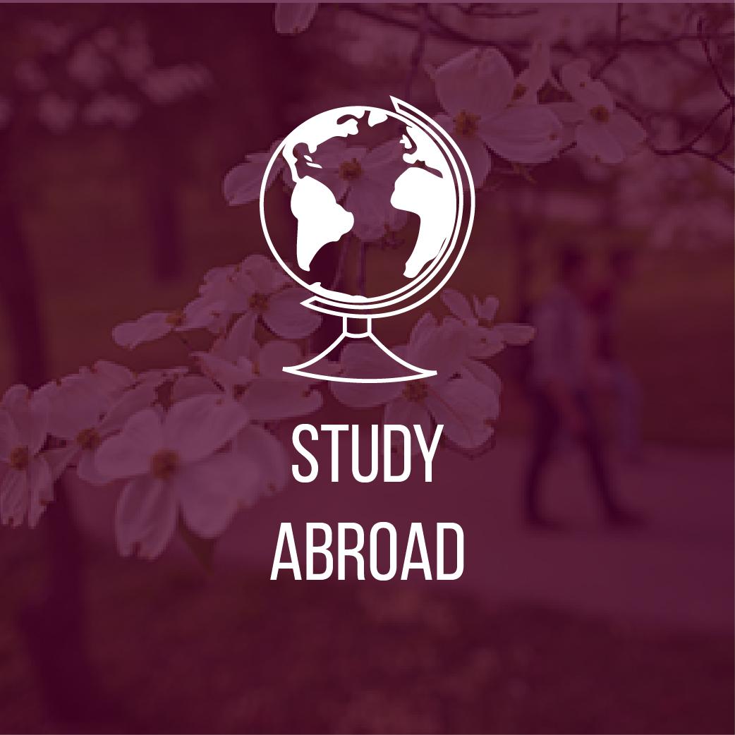 Advising_Website_Icons_JJ03_Study_Abroad.jpg