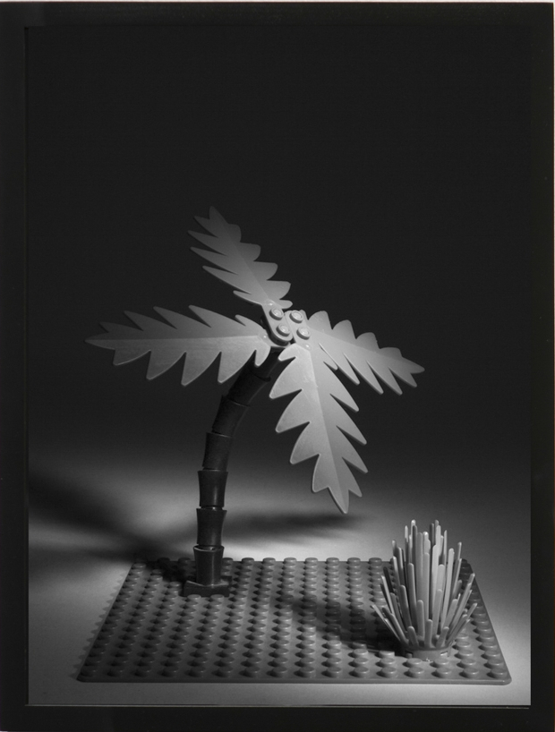 "Daniel Terna Lego Palm Tree, 2012/2015 16"" x 12"" (Framed) Edition of 3 + 2 AP's Pigment print   Click here to purchase"