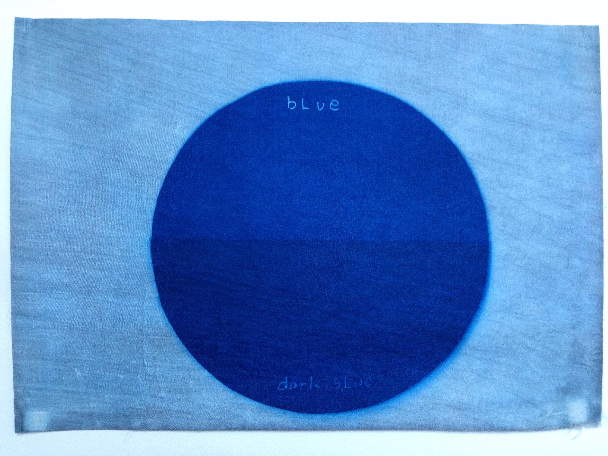 """Nigel Scott Blue, Dark Blue, 2017 9"""" x 12.75' Cyanotype on silk SOLD"""