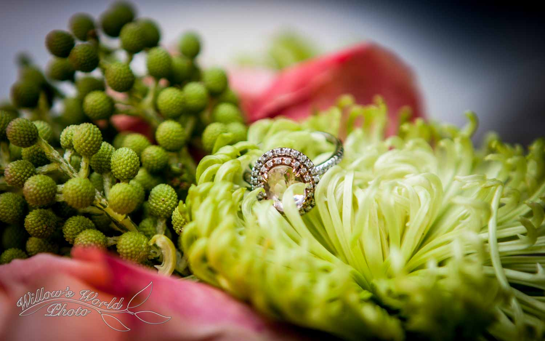 New Orleans Wedding and Engagement Photos WillowsWorldPhoto-36.jpg