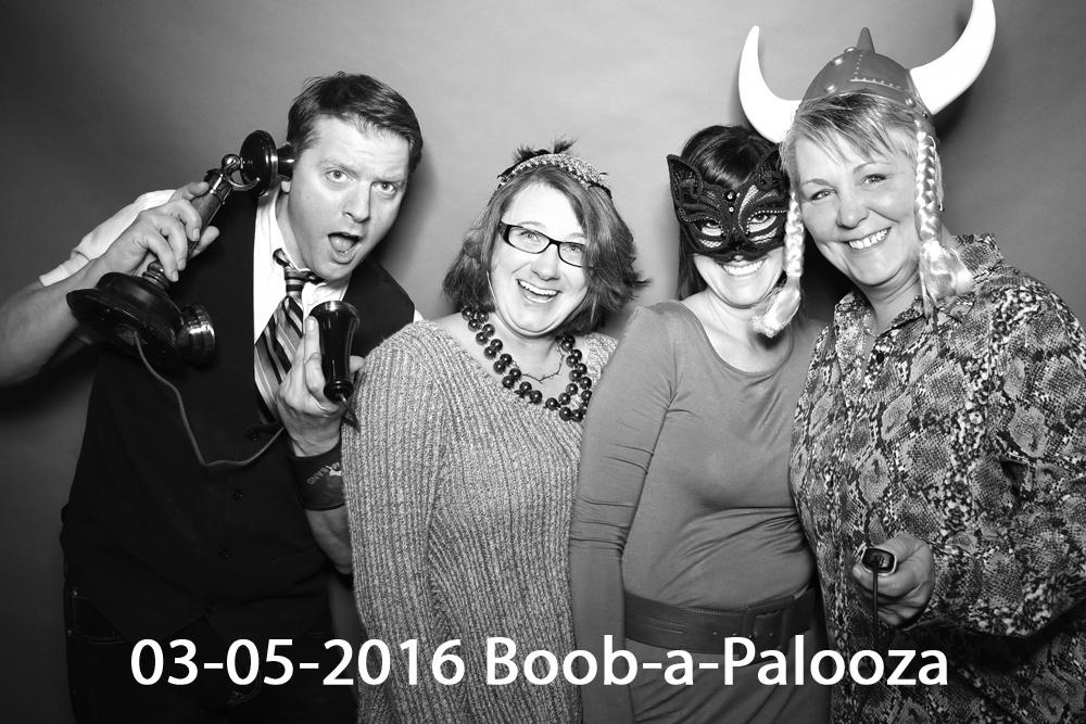 boobapalooza feature1.jpg