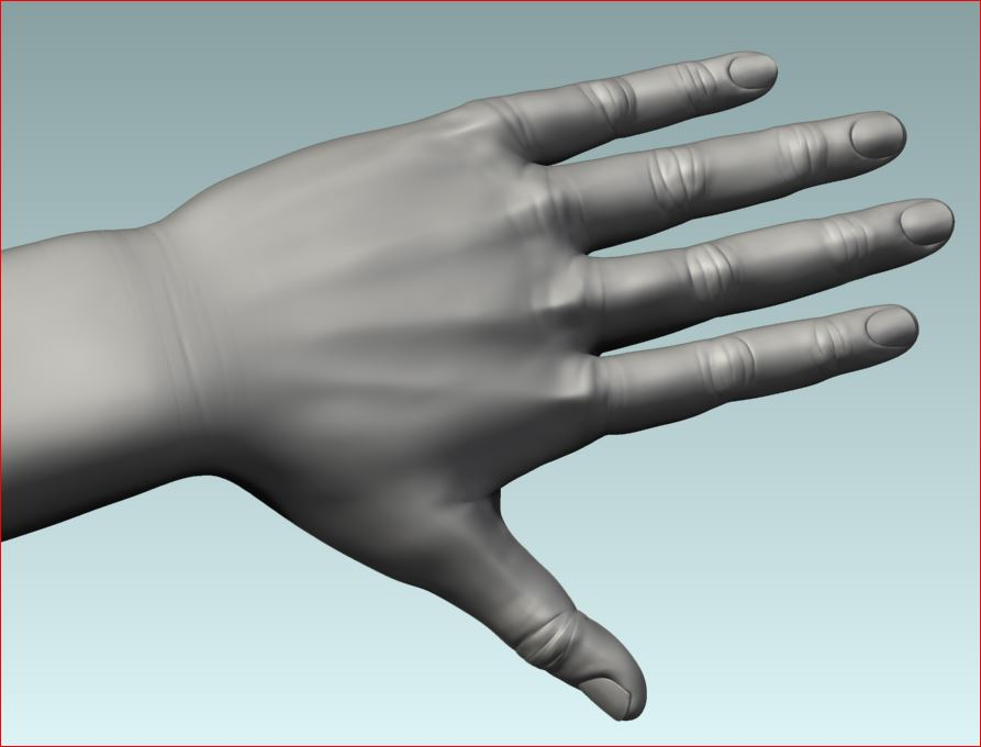 _FinalHP_Female_Hand.JPG