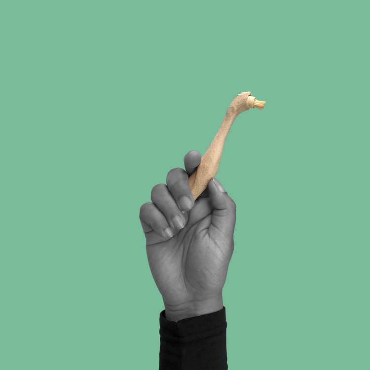 Usha - 100% Biodegradable Toothbrush