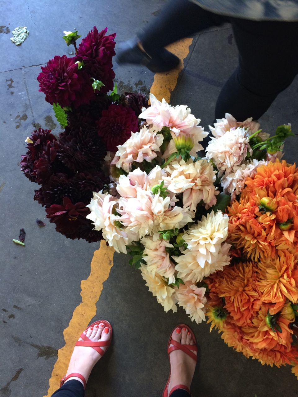 Dahlias at the SF flower mart
