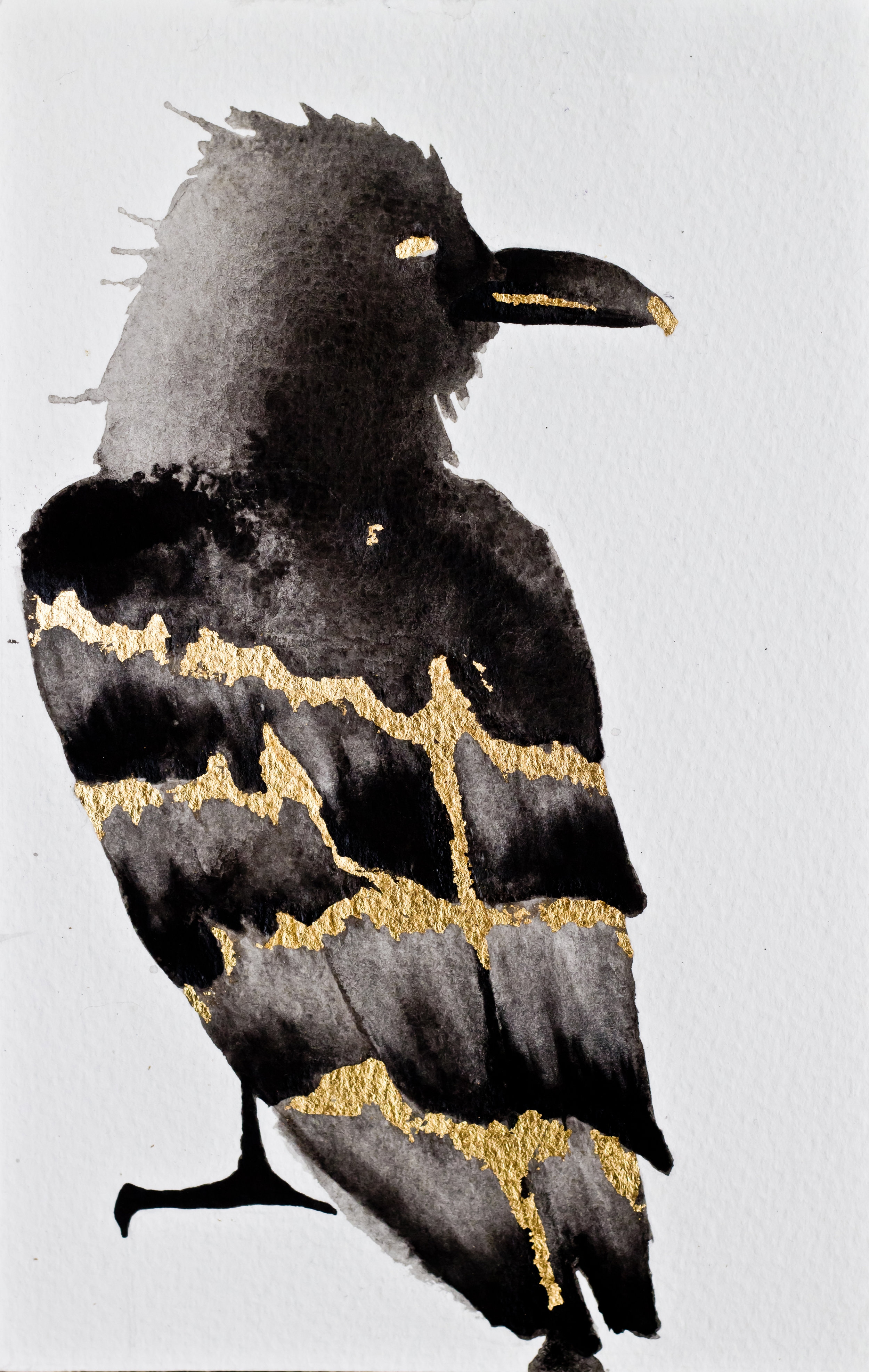 """Crow spirit started showing up right before my """"resurrection"""" phase. If you aren't familiar with animal totems, Google """"crow totem meaning"""". Fun stuff."""