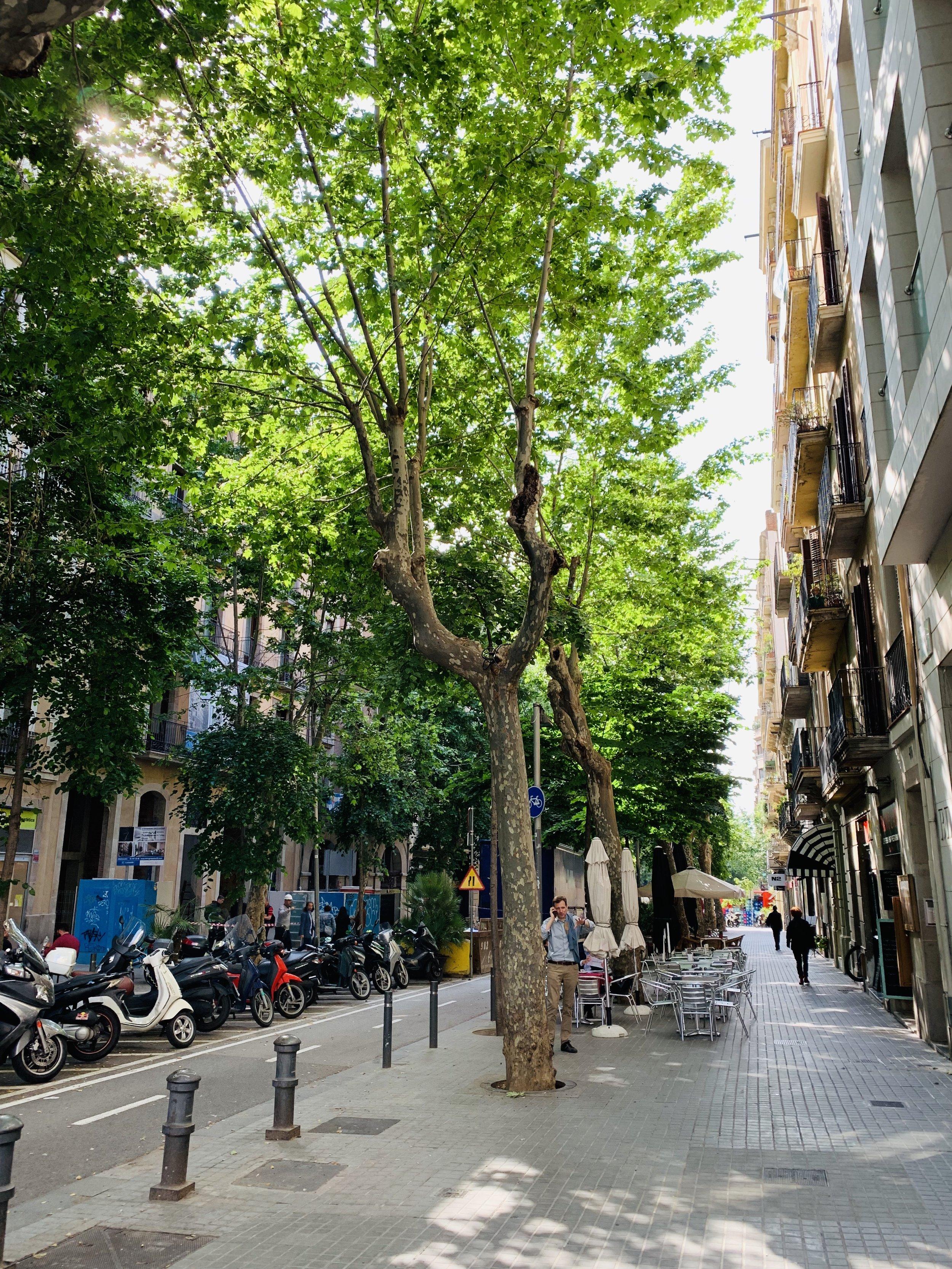 Barcelona neighborhood