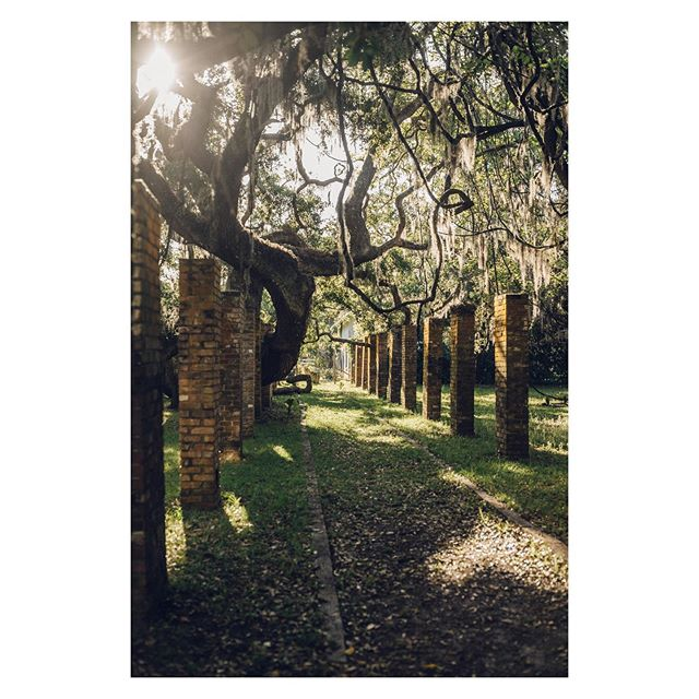 The walkway to breakfast @greyfieldinn