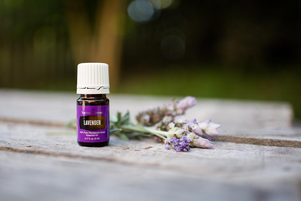 web-lavender-3.jpg