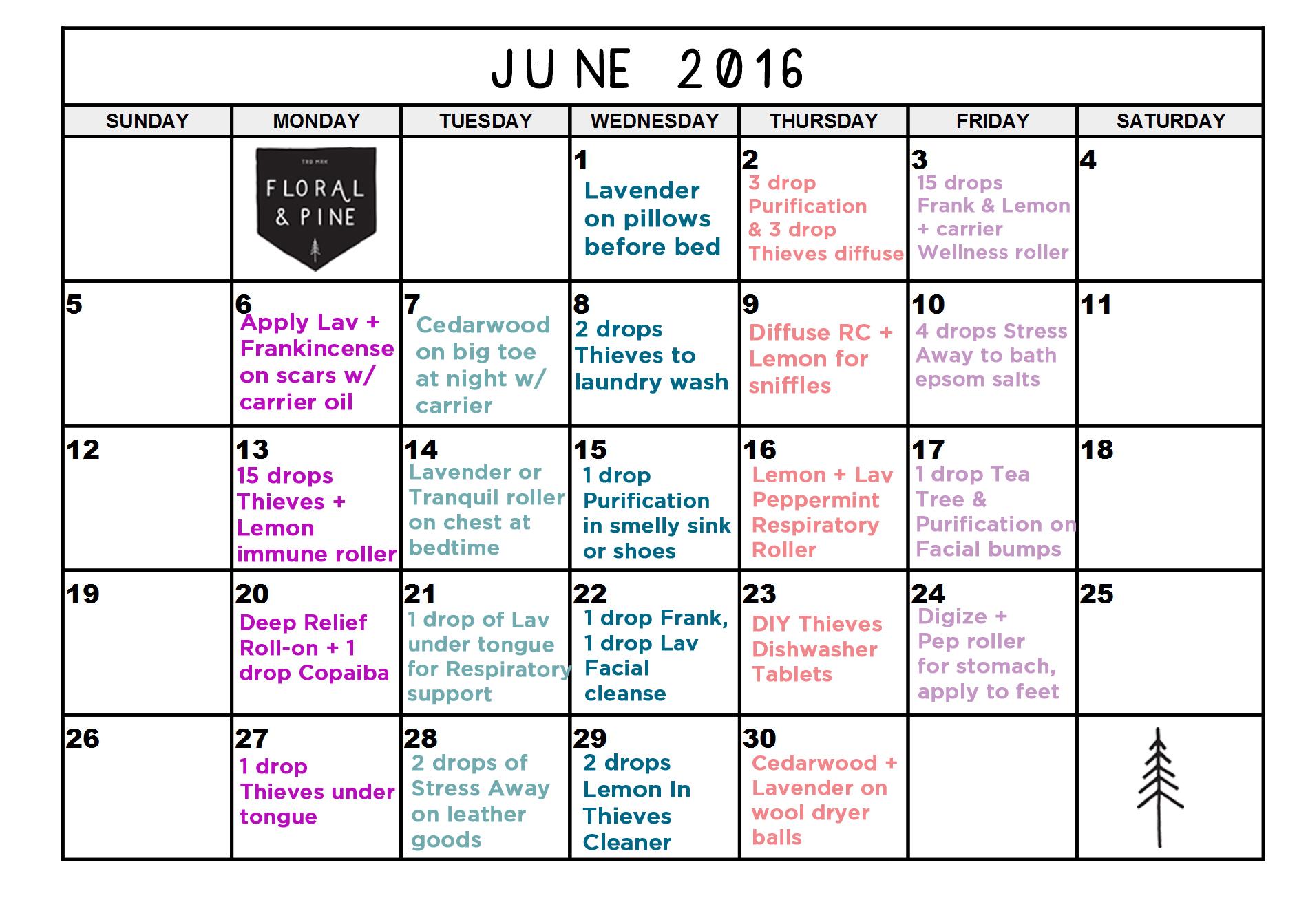 JUNE_2016_DAILYOILS.jpg
