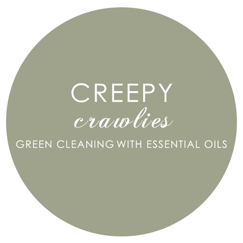 7 Creepy Crawlies.jpg