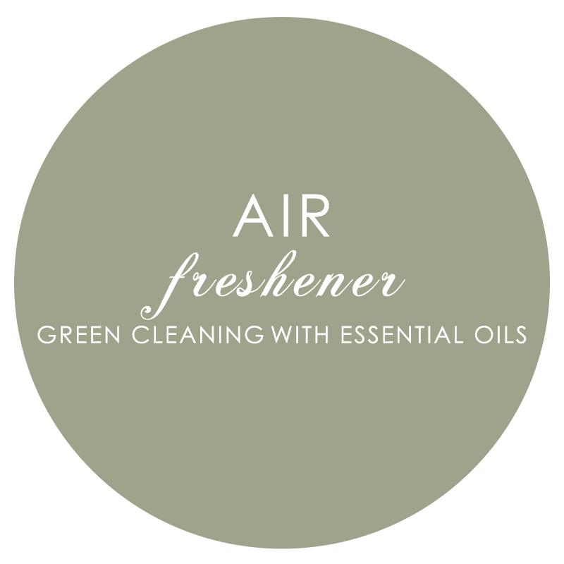 12 Air Freshener.jpg