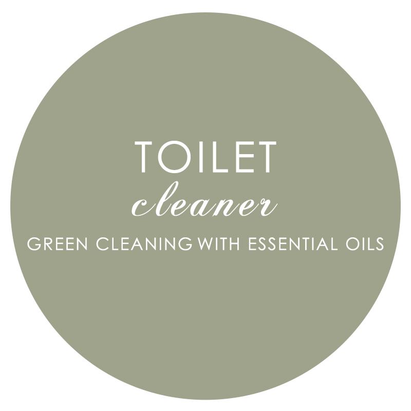 14 Toilet Cleaner.jpg