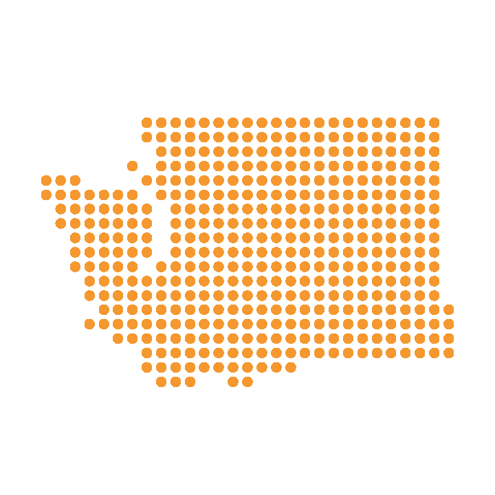 noun_Washington_468281 copy.png