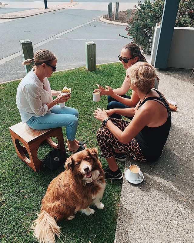 💅🏽 〰️ girl gang out for coffee, feat. Sooki 🐶 #dogsofthecure