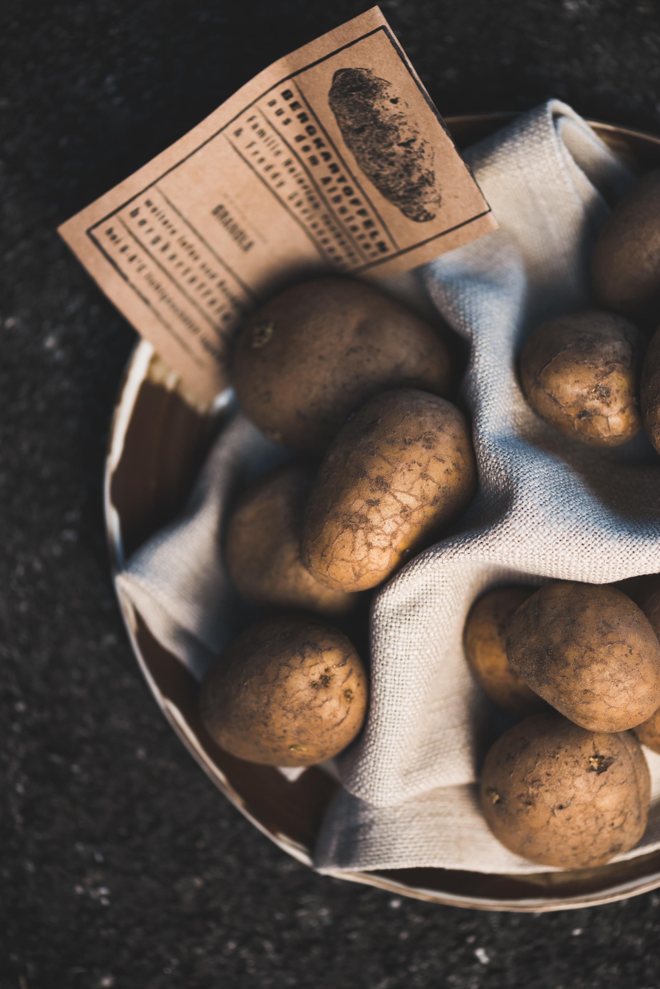 Kartoffeln die es nicht immer leicht hatten ...