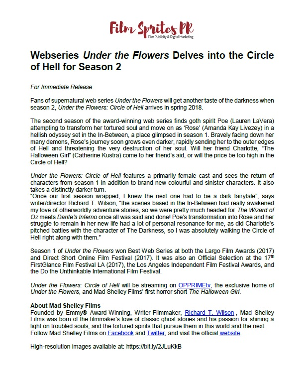 An example of a real Press Release for the Under the Flowers web series.