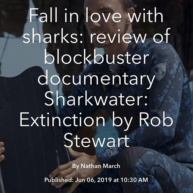 """It's better to use a weapon than a camera to create social change"". Review of Sharkwater: Extinction in the Follow Magazine blog. Read the review then see the film at the Melbourne Documentary Film Festival."