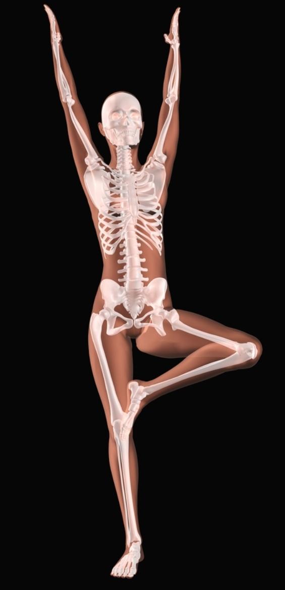 healthy-skeleton-tree-pose-woman.jpg
