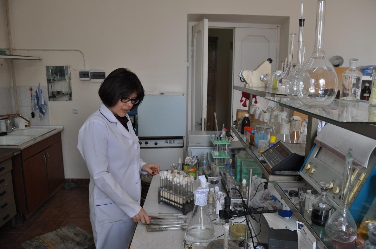 ANSEF award biotech-3474