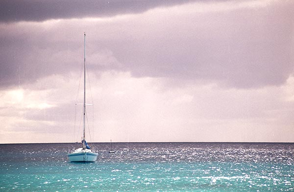 barbados pantone colours of years002.jpg
